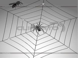 «Суреттер сөйлейді» Мына нүктелерді координата жазықтығына орналастыр, нәтиж