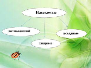 Викторина «Что это за насекомое» Бабочка с крыльями лимонного цвета, имеющим