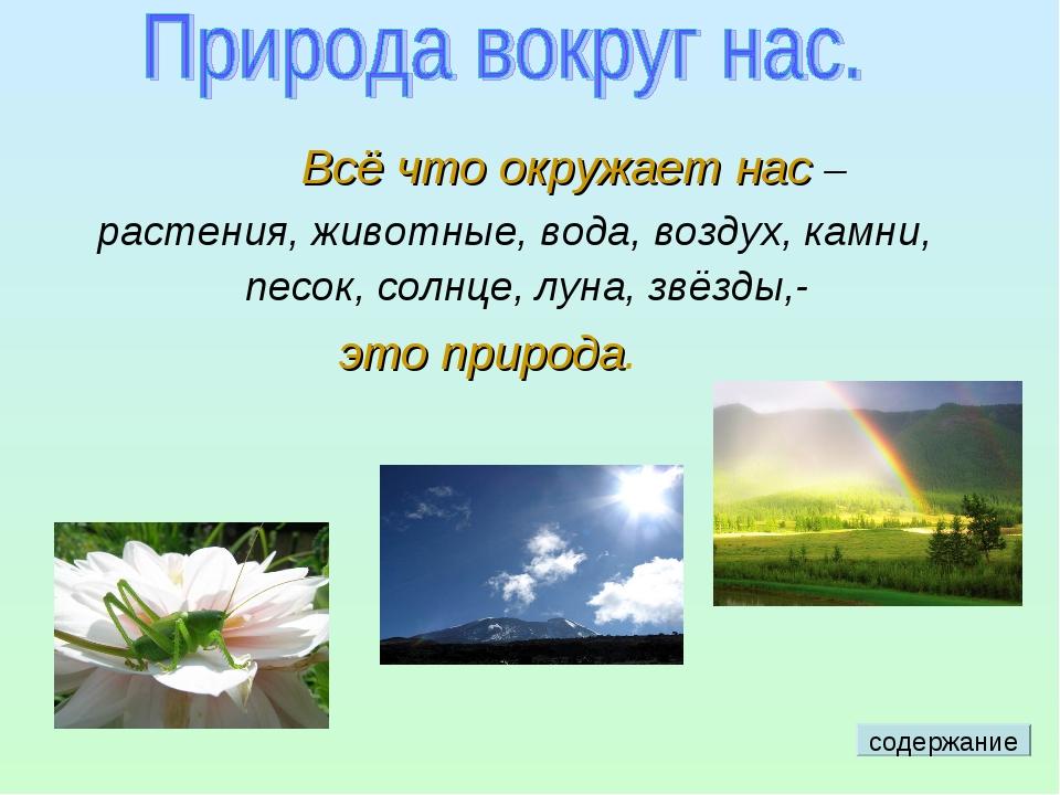 Всё что окружает нас – растения, животные, вода, воздух, камни, песок, солнц...