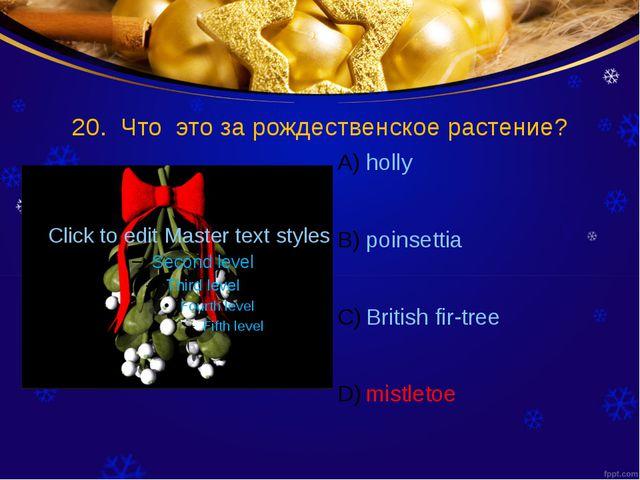 20. Что это за рождественское растение? holly poinsettia British fir-tree mis...