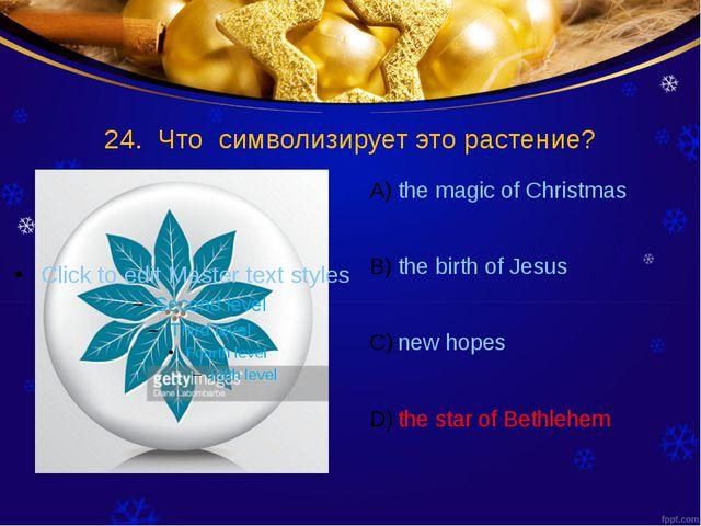 24. Что символизирует это растение? the magic of Christmas the birth of Jesus...
