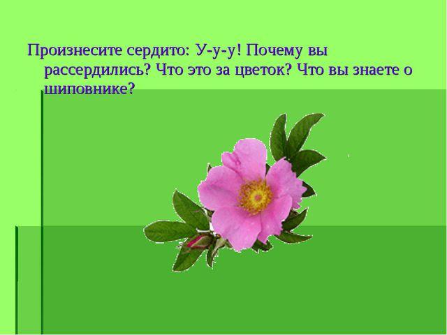 Произнесите сердито: У-у-у! Почему вы рассердились? Что это за цветок? Что вы...
