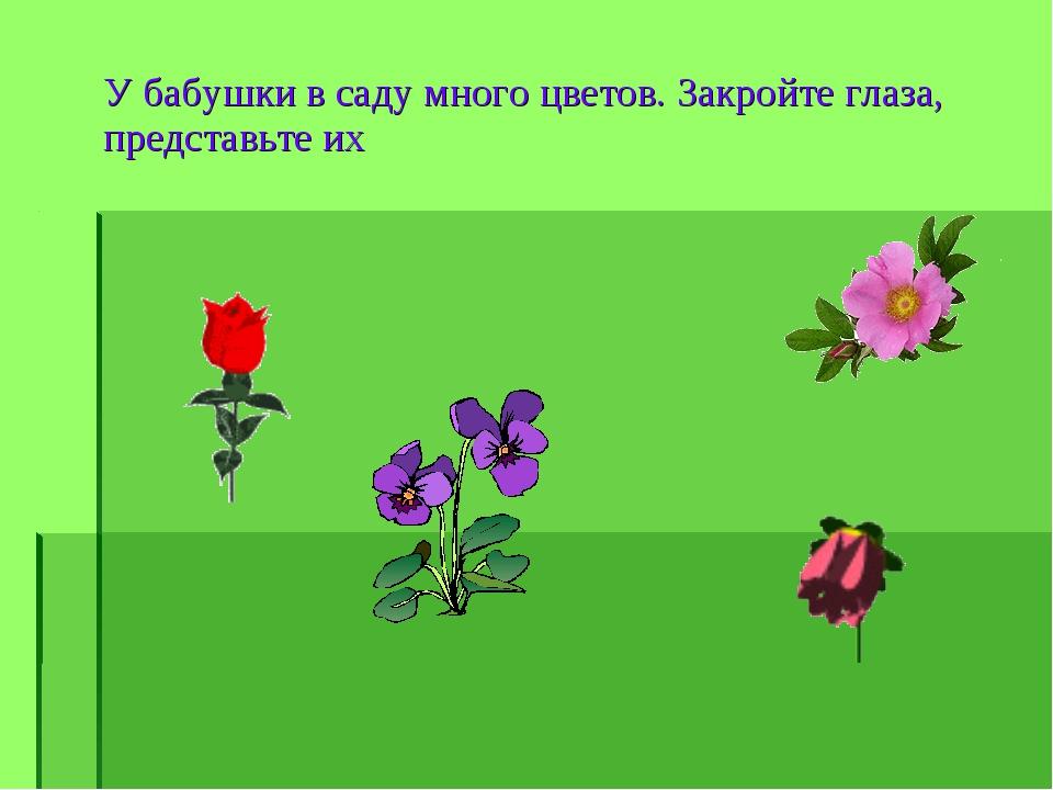 У бабушки в саду много цветов. Закройте глаза, представьте их
