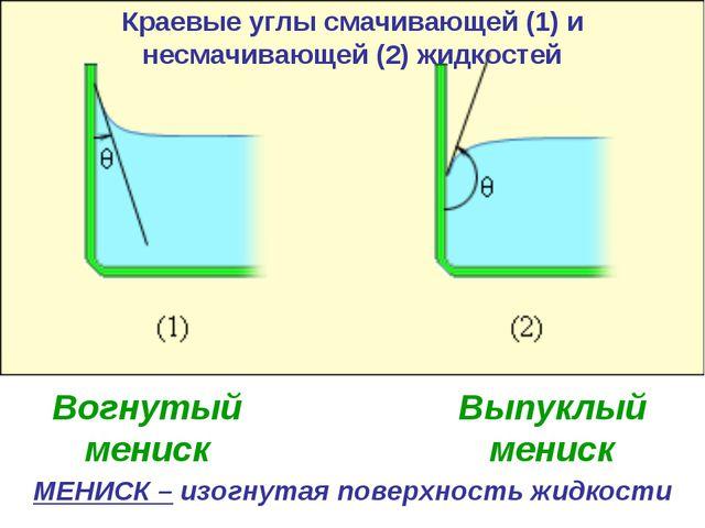 Краевые углы смачивающей (1) и несмачивающей (2) жидкостей МЕНИСК – изогнутая...