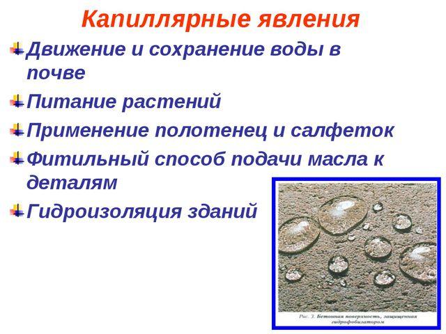 Капиллярные явления Движение и сохранение воды в почве Питание растений Приме...