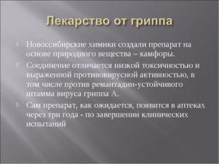 Новоссибирские химики создали препарат на основе природного вещества – камфор