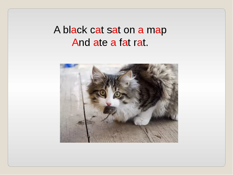 A black cat sat on a map And ate a fat rat.
