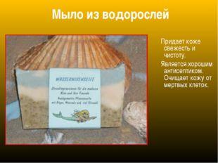 Мыло из водорослей Придает коже свежесть и чистоту. Является хорошим антисепт