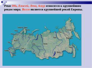 Реки Обь, Енисей, Лена, Амур относятся к крупнейшим рекам мира. Волга являетс