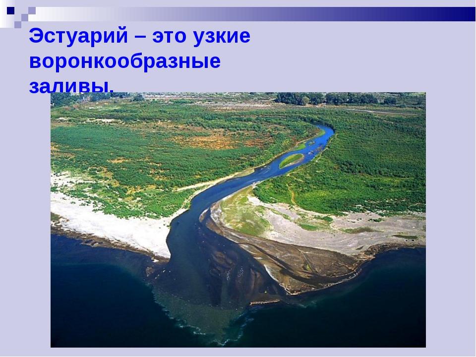 Эстуарий – это узкие воронкообразные заливы.