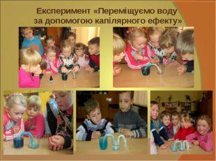 Експеримент «Переміщуємо воду за допомогою капілярного ефекту»