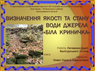Робота: Литвинюк Дарії, Валігурського Устима учнів 4 класу Керівник: Левко Ла