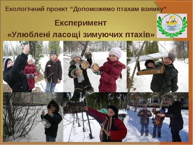 """Екологічний проект """"Допоможемо птахам взимку"""" Експеримент «Улюблені ласощі зи..."""