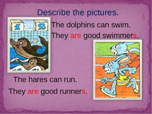 Describe the pictures. The dolphins can swim. The hares can run. They are goo