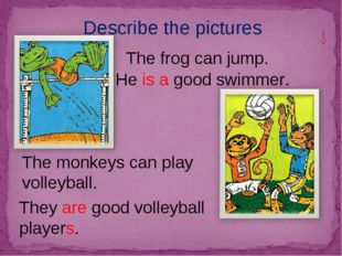 Describe the pictures The monkeys can play volleyball. The frog can jump. He