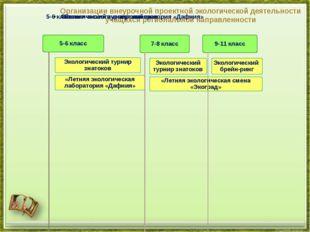 Организации внеурочной проектной экологической деятельности учащихся регионал