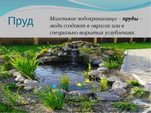 Пруд Маленькие водохранилища – пруды – люди создают в оврагах или в специальн