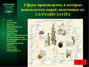 Сферы производства, в которых используется сырьё, полученное из CANNABIS SAVI