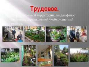 Трудовое. уборка школьной территории, ландшафтное озеленение, пришкольный уче