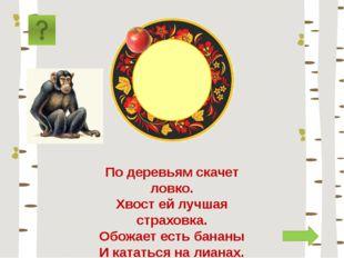 обезьяна По деревьям скачет ловко. Хвост ей лучшая страховка. Обожает есть ба
