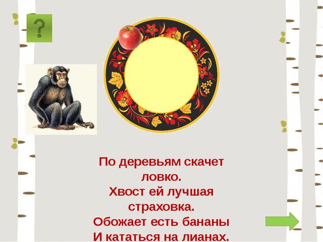 обезьяна По деревьям скачет ловко. Хвост ей лучшая страховка. Обожает есть ба...