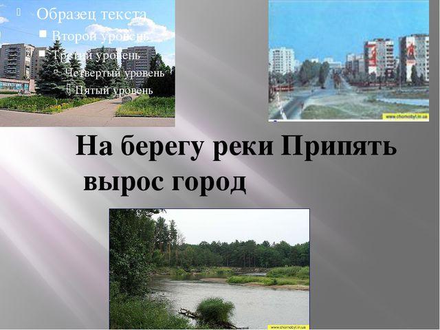 На берегу реки Припять вырос город