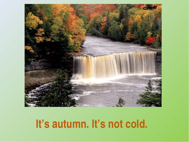 It's autumn. It's not cold.