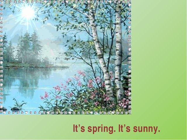 It's spring. It's sunny.
