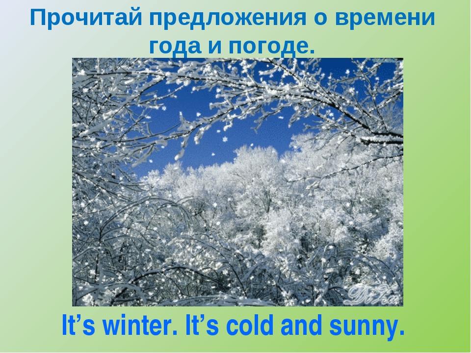 Прочитай предложения о времени года и погоде. It's winter. It's cold and sunny.