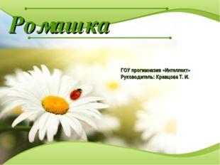 Ромашка ГОУ прогимназия «Интеллект» Руководитель: Кравцова Т. И.