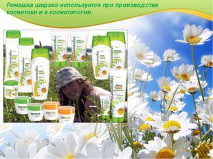Ромашка широко используется при производстве косметики и в косметологии.