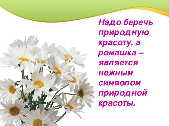 Надо беречь природную красоту, а ромашка – является нежным символом природной...