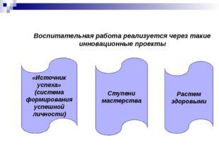 Воспитательная работа реализуется через такие инновационные проекты «Источник
