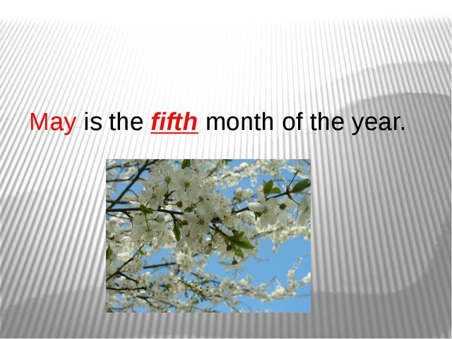 May is the fifth month of the year.