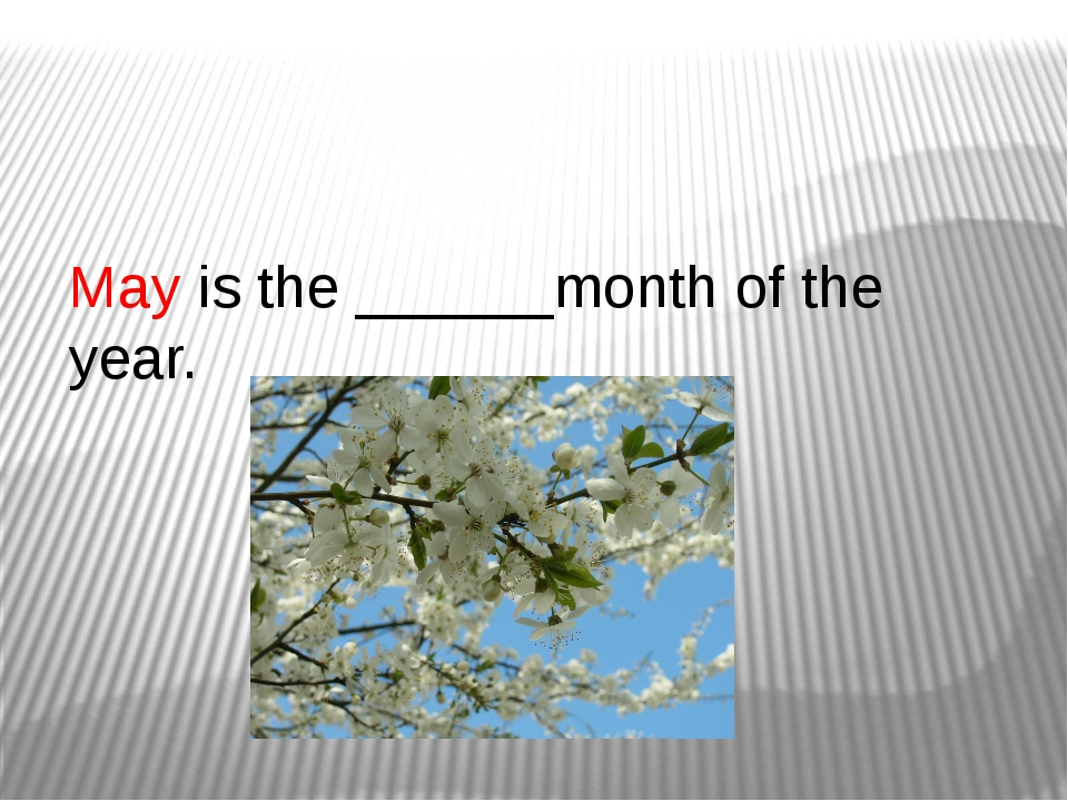 May is the ______month of the year.