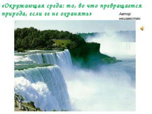 «Окружающая среда: то, во что превращается природа, если ее не охранять» Авт