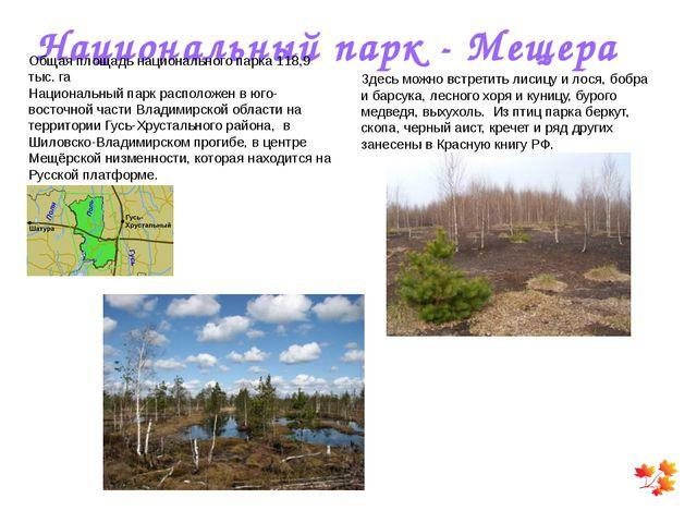 Национальный парк - Мещера Общая площадь национального парка 118,9 тыс. га На...