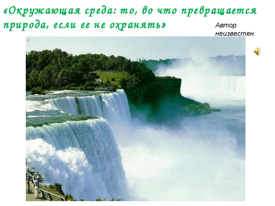 «Окружающая среда: то, во что превращается природа, если ее не охранять» Авт...