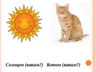 Солнцем (каким?) Котом (каким?)