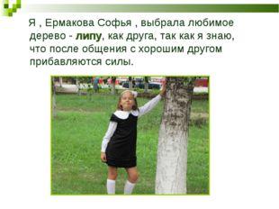 Я , Ермакова Софья , выбрала любимое дерево - липу, как друга, так как я зна