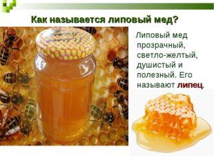Как называется липовый мед? Липовый мед прозрачный, светло-желтый, душистый и