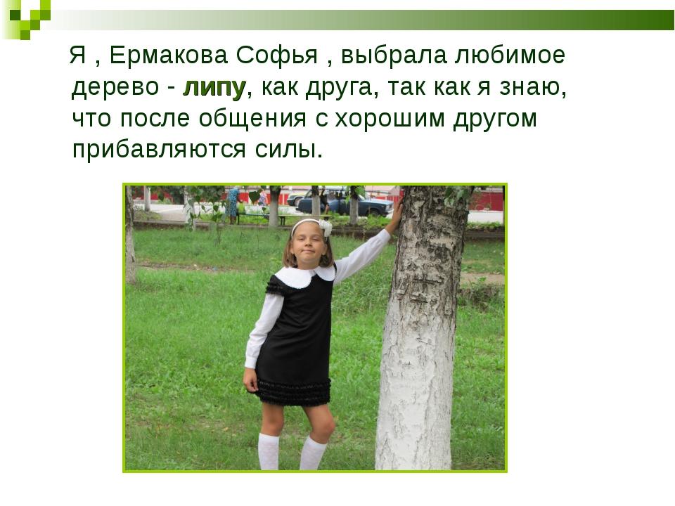 Я , Ермакова Софья , выбрала любимое дерево - липу, как друга, так как я зна...
