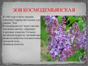 ЗОЯ КОСМОДЕМЬЯНСКАЯ В 1943 году в честь героини советского народа былназван