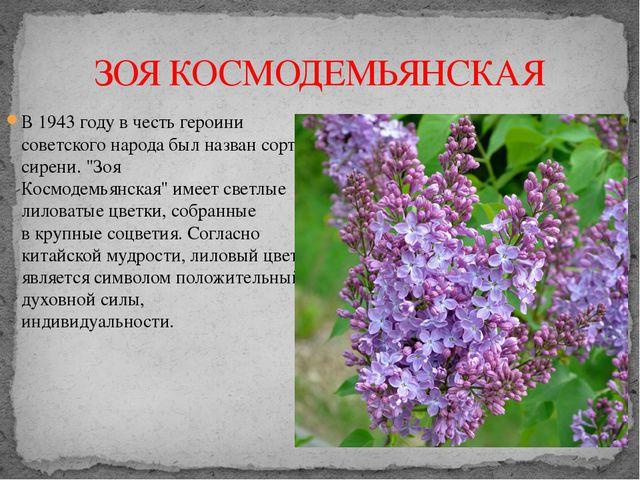 ЗОЯ КОСМОДЕМЬЯНСКАЯ В 1943 году в честь героини советского народа былназван...