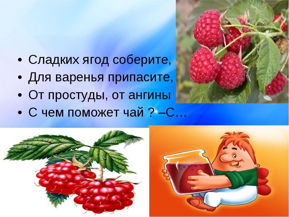 Сладких ягод соберите, Для варенья припасите, От простуды, от ангины С чем по...