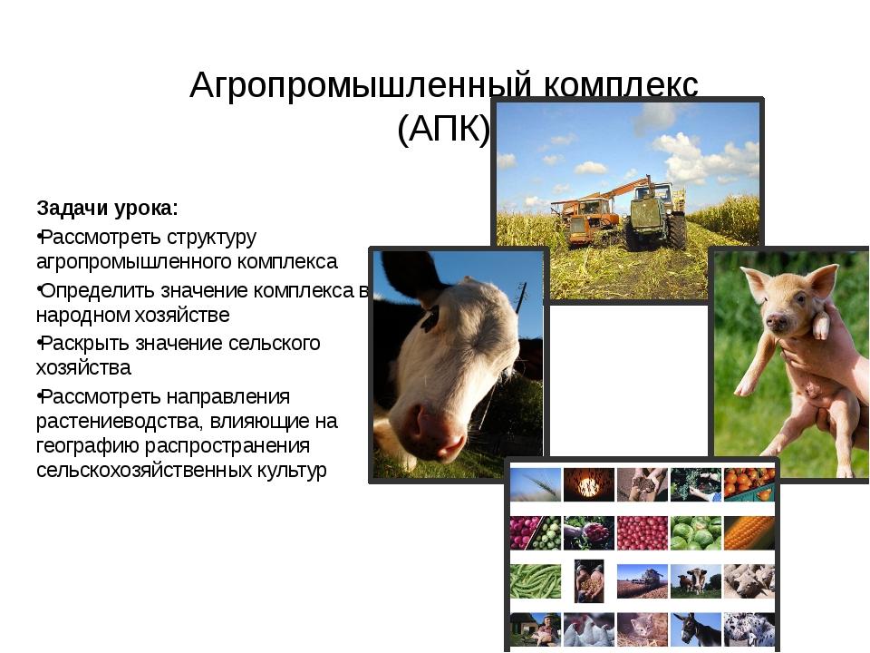 Агропромышленный комплекс (АПК) Задачи урока: Рассмотреть структуру агропромы...