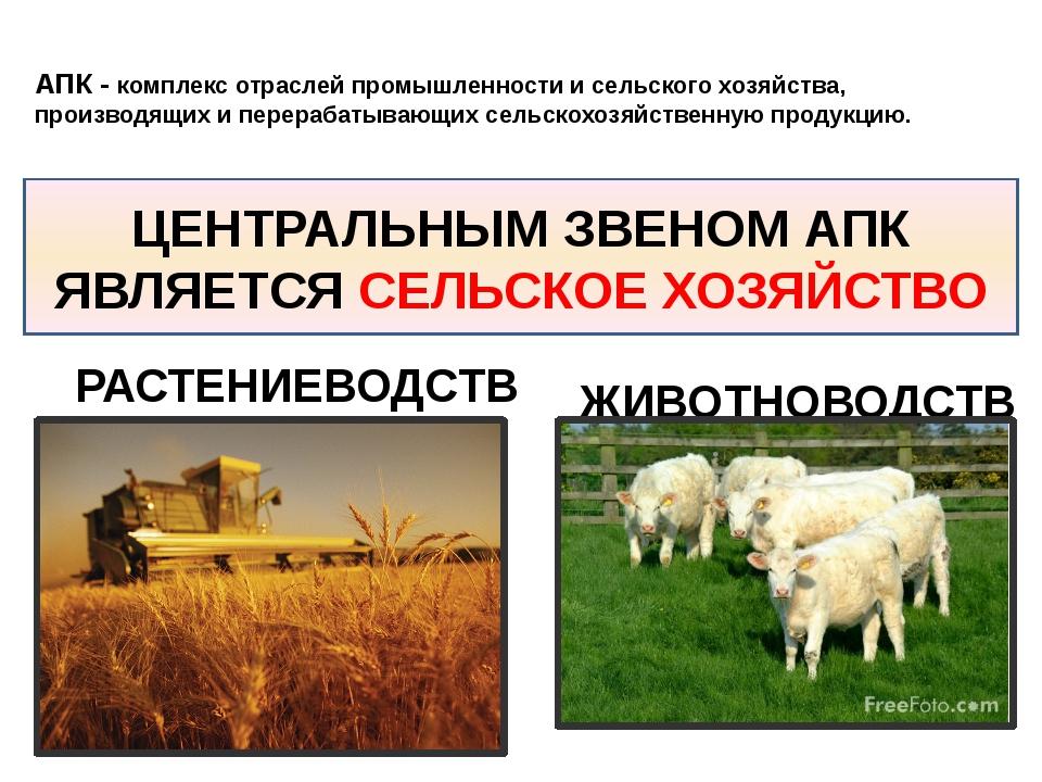 АПК - комплекс отраслей промышленности и сельского хозяйства, производящих и...
