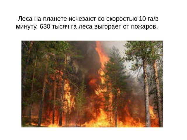 Леса на планете исчезают со скоростью 10 га/в минуту. 630 тысяч га леса выго...