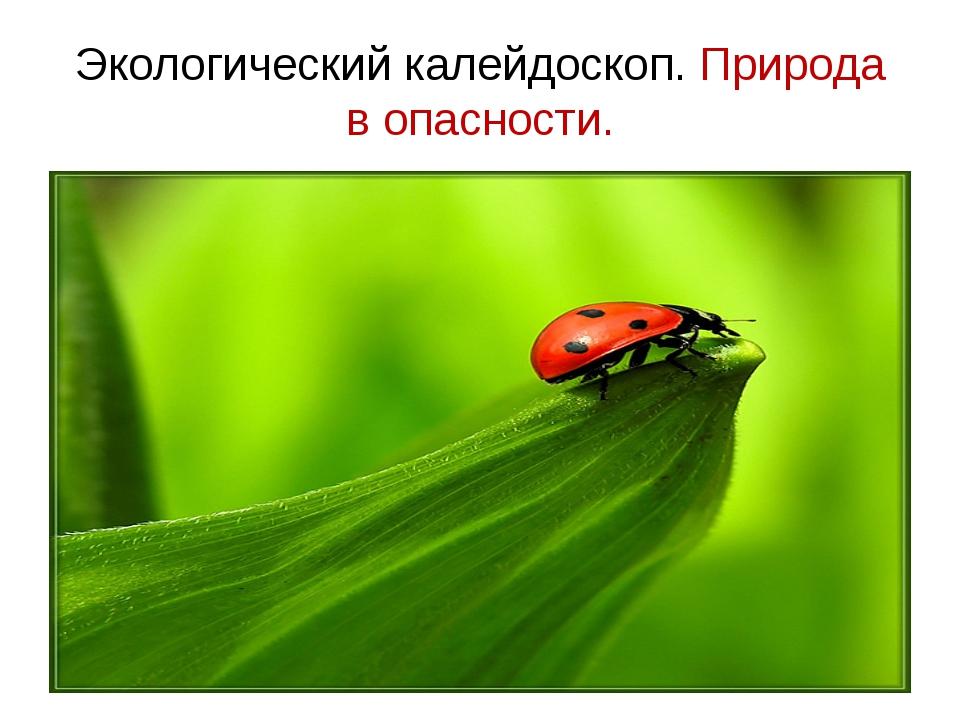 Экологический калейдоскоп. Природа в опасности.
