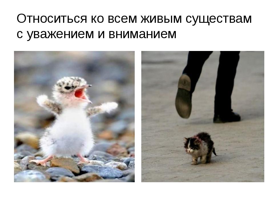 Относиться ко всем живым существам с уважением и вниманием